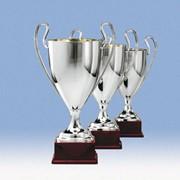 Кубки наградные, призовые, элитные, кубки спортивные, награды, призы, трофеи, спортивная атрибутика фото