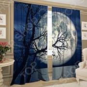 Фотошторы ТамиТекс «Лунный восход» фото