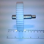 Z088.05 Шестерня основная для мясорубки Дива фото