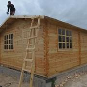 Дачный домик за 50 000 гривен фото