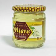 Акациевый мёд 530 грамм фото