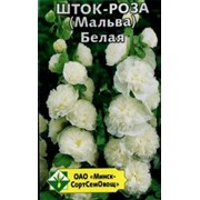 Шток-роза (Мальва) Белая фото