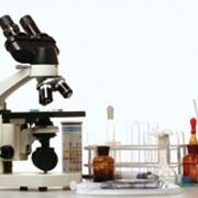 Лабораторная диагностика, анализы. фото