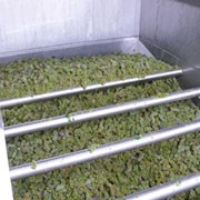 По переработке винограда, изготовлению мелких и крупных партий виноматериалов. фото