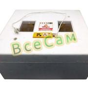 Автоматический инкубатор для яиц Теплуша на 63 яйца фото