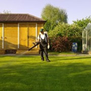 Услуги по уходу за садом фото