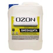 Антисептик 10 л OZON Биозащита универсальный фото