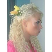 Обучение парикмахеров в Харькове: стрижки, колористика, наращивание волос фото