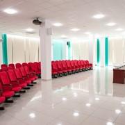 Проведение деловых встреч и конференций фото