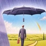 Индивидуальная программа страхования. фото