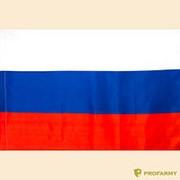 Флаг РФ 70х105 фото