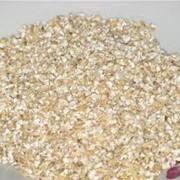 Крупа пшеничная ярая фото