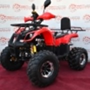 Квадроцикл Sport Energy Hunter 125 Max H фото