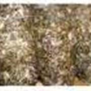 Оборудование для грибоводства фото