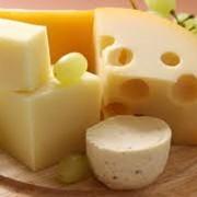 Сыр твёрдый фото