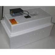 Инкубатор Несушка на 36 яиц Аналоговый терморегулятор (автомат) 220/12 Вт фото