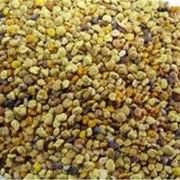 Пыльца цветочная, собранная пчелами 100 гр. фото