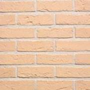 Кирпич керамический Terca AGORA WIT IVOOR WFD65 полнотелый лицевой 215х102х65 фото