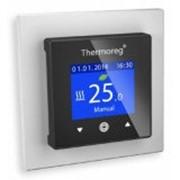 Терморегуляторы Thermo Thermoreg TI-970 фото
