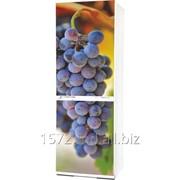 Фасад для холодильников Snaige Артикул: 036