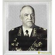 Гобелен Жуков малый 35х40 фото