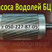 Ротор для насоса ВодолейБЦ 1.6-20У фото