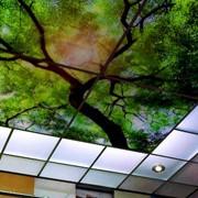 Оригинальный стеклянный потолок для дома и офиса фото