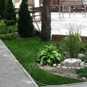Озеленение и благоустройство фото