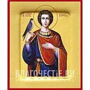 Храм Покрова Богородицы Трифон, святой мученик, икона на сусальном золоте (гладкий МДФ 6 мм без ковчега) Высота иконы 10 см фото