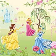 "Фотообои ""Сад принцесс"" 184х127 см фото"