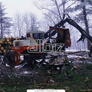 Оборудование лесной промышленности фото