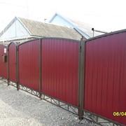 Заборы из профнастила, сетки рабица, решетчатые. фото