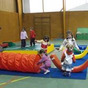 Проектирование и установка спортивного оборудования в спортивных залах и местах для занятий спортом фото