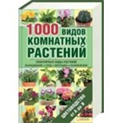 1000 видов комнатных растений фото