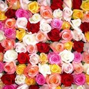 Доставка цветов в актау фото