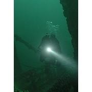 Обучение подводному плаванию фото