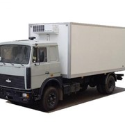 Перевозки грузов рефрижераторными контейнерами фото