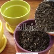Почва для растений фото