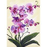 Рисунок на канве р.37/49 Орхидеи, композиция фото