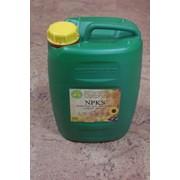 Микроудобрение для масличных культур NPKS, 75 грн за 1 л фото