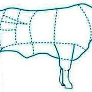 Мясо в тушах и полутушах фото