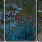 Модульная картина Ирисы и кувшинки, 1914-1917, Моне, Клод фото