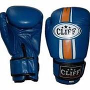 Перчатки боксерские TECH STAR (FLEX) синие, 12 OZ фото