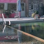 Насосы фонтанные Aquamax ECO фото