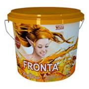 Краска акриловая Alina Paint Fronta (фасадная) 4,5 кг фото