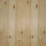 Фанера ФК(влагостойкая) 4,0х1525х1525мм сорт 4/4Украина фото