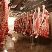 Хранение мясной продукции, хранение мяса фото