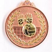 Медаль рельефная Волейбол бронза фото