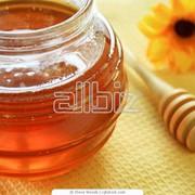 Мед луговой фото