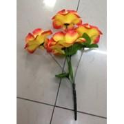 Цветы искусственные 6 цветков хлопка 0238A-5 фото